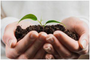 Próbki ziemi do badania, analiza gleby