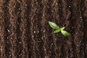 Gleba rolnicza, badanie fizykochemiczne